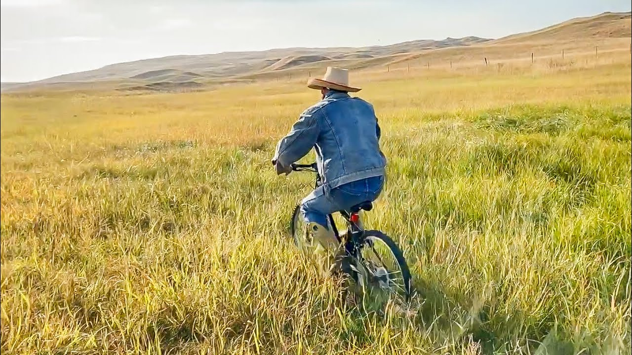 The Bicyclin' Cowboy | Ridin' Bikes and Gatherin' Cows