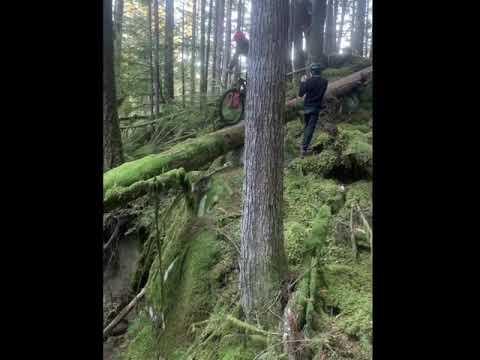 Mountain Biking on 50 Feet tree grounded passage