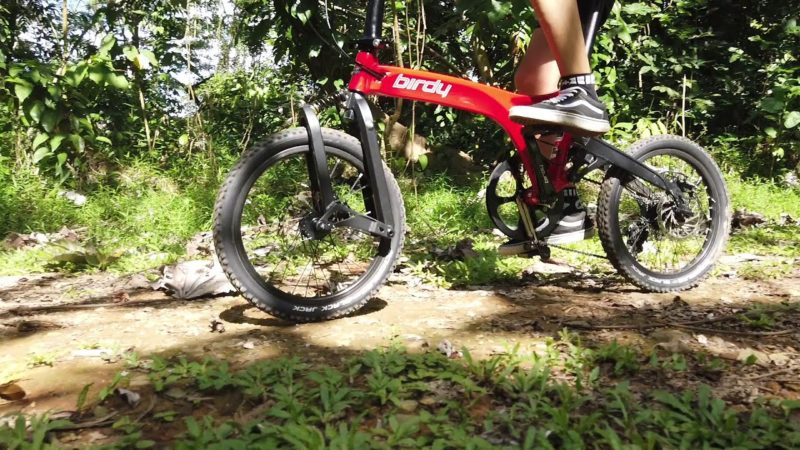 Catch the Birdy GT in action – Performance Foldable Bike