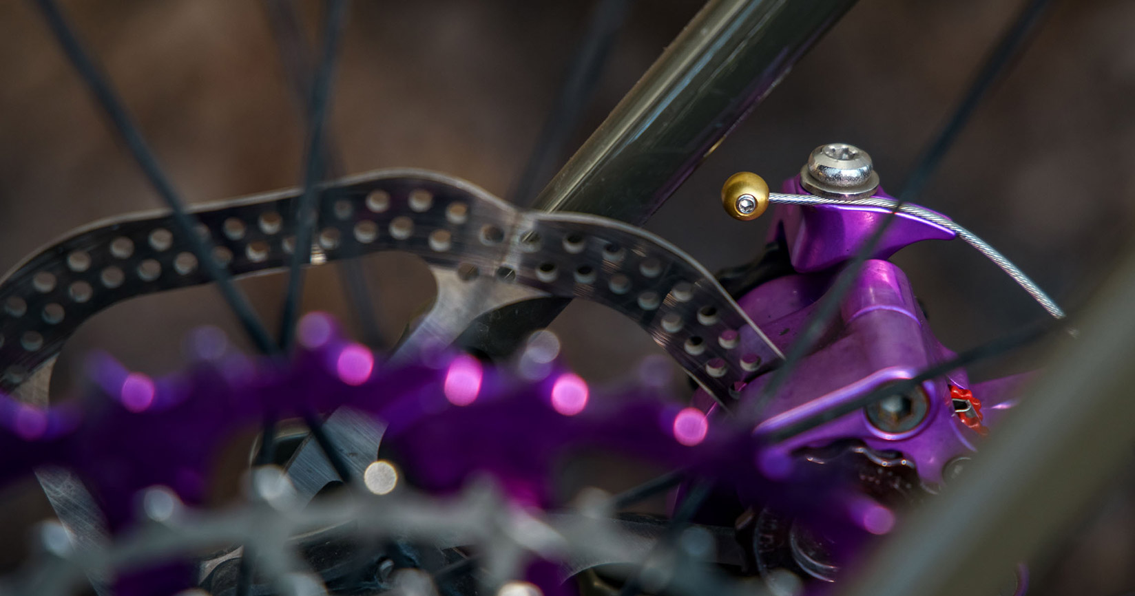 Forager Cycles Cable Cherries: First Look
