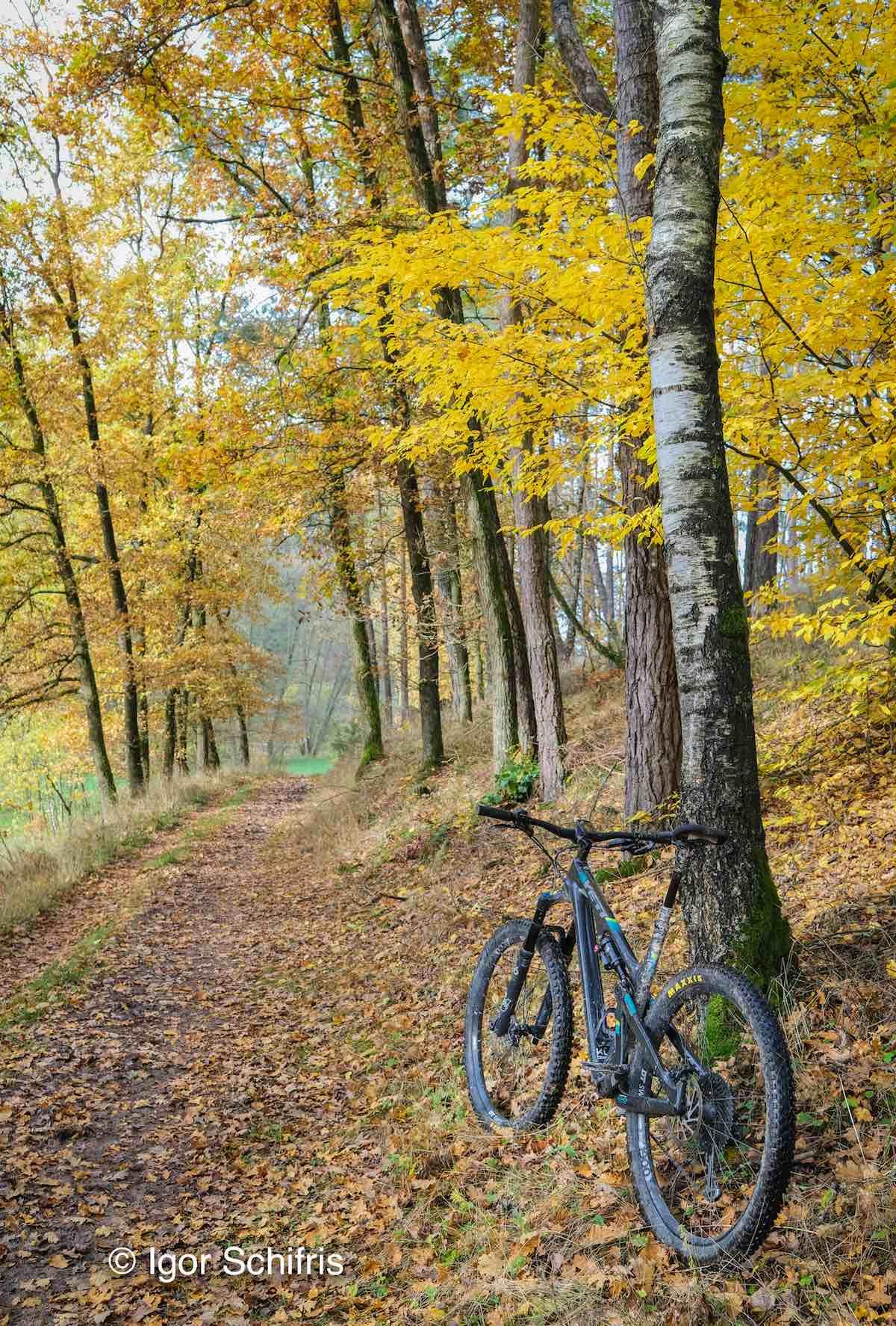 Foto del día de Bikerumor: Baviera, Alemania