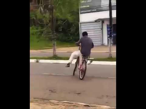 Bike on bike violence