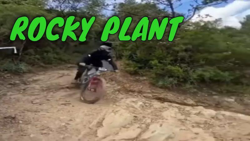Mountain Biking Major Rock Plant