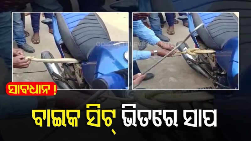 Watch – 4 Ft Long Cobra Rescued From A Bike In Bhubaneswar