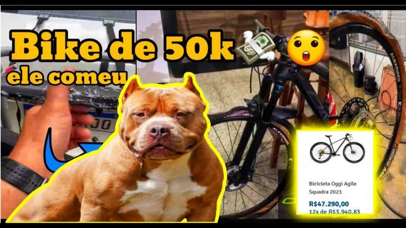 cachorro comeu bike de carbono de 50k | oggi agile pro bike avaliada em mais de 50 mil reais!