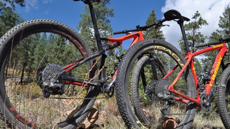Hardtail vs Full Suspension MTB
