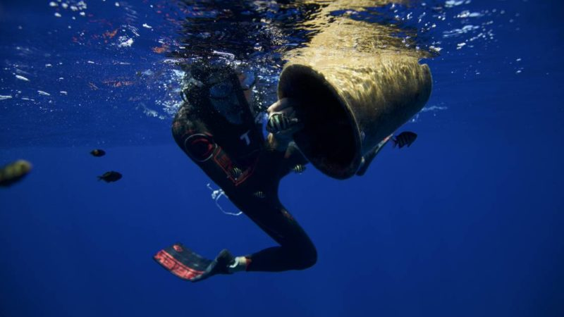 Watch Ben Lecomte Swim 5,000 Miles for Ocean Pollution Awareness