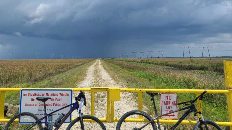 Bikerumor Bild des Tages: Florida Everglades