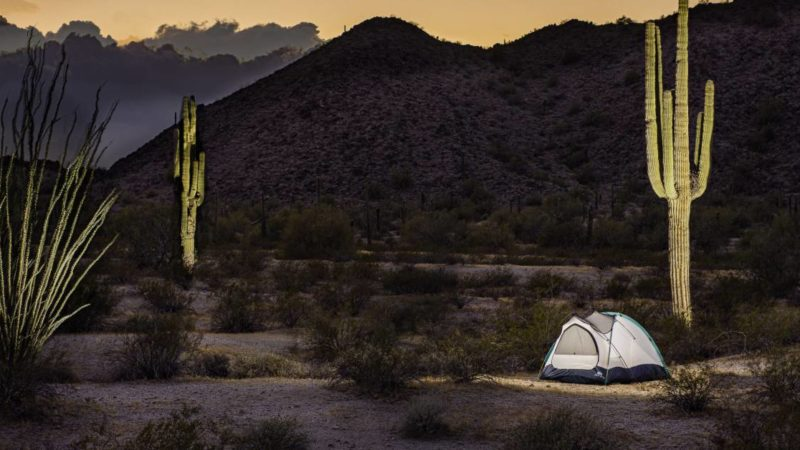 The Best Backpacking Tents of 2021