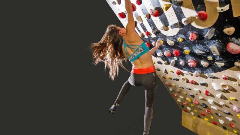 Kilter, Moon, Grasshopper & More: Interactive Climbing Training Boards Explained