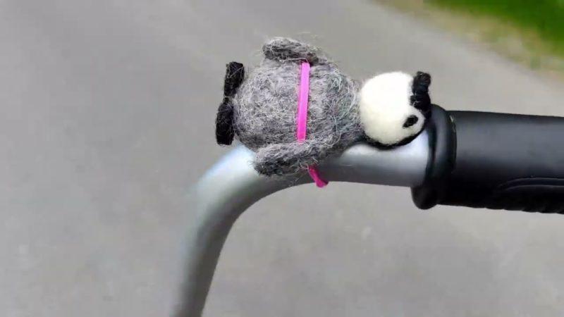 Bob goes biking