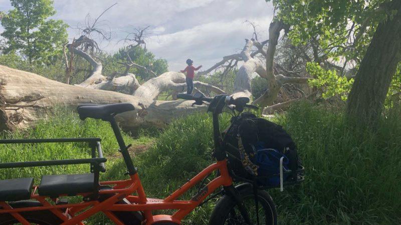 Bikerumor-foto van de dag: Golden, Colorado