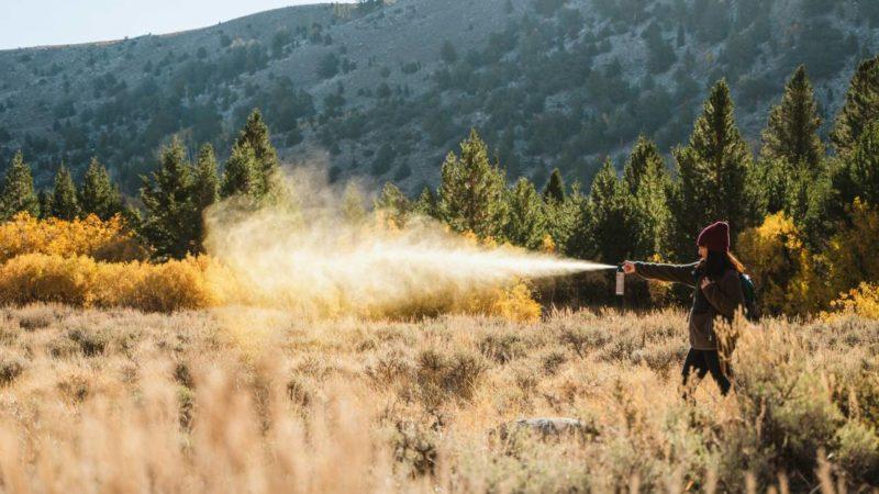 3 Bear Spray Myths Dispelled (And a Few Tips to Help Keep You Safe)