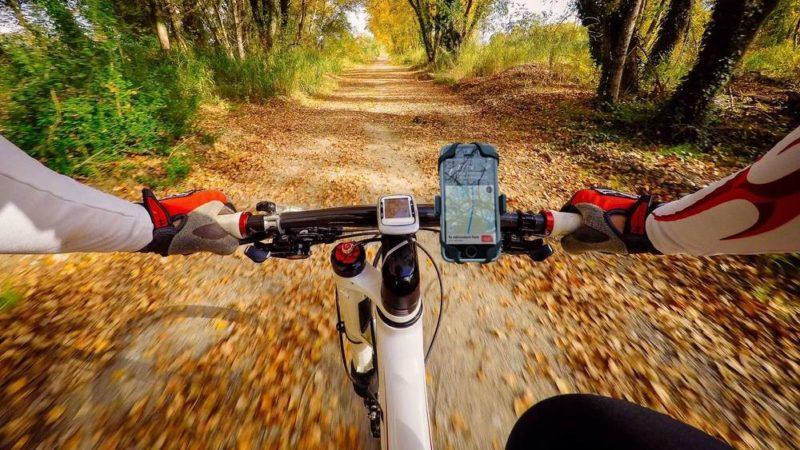 The Best Bike Phone Mounts of 2021