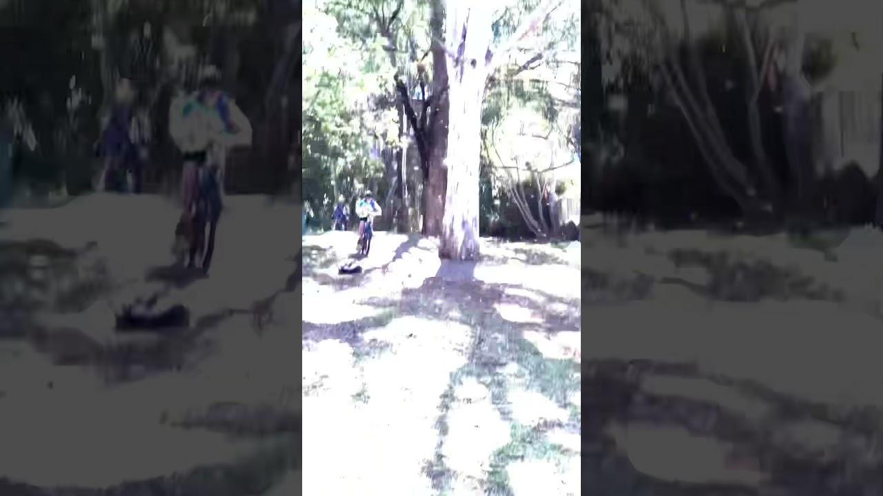 Biking with Da Boys