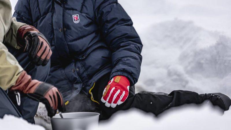 Free Gear Fridays: Hestra Alpine Pro Glove Giveaway